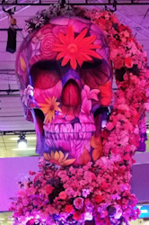 Theme of ECR 2017 was the Flower Gardens of Radiology